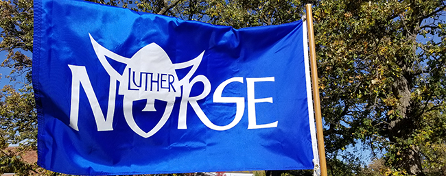 Blue Norse Flag